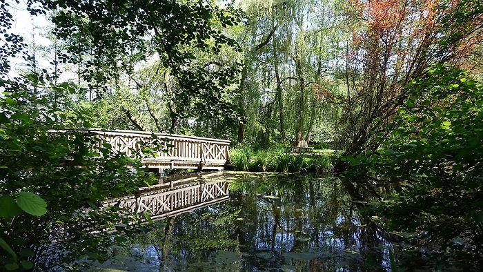 Eine hölzerne Brücke spiegelt sich im Teich.
